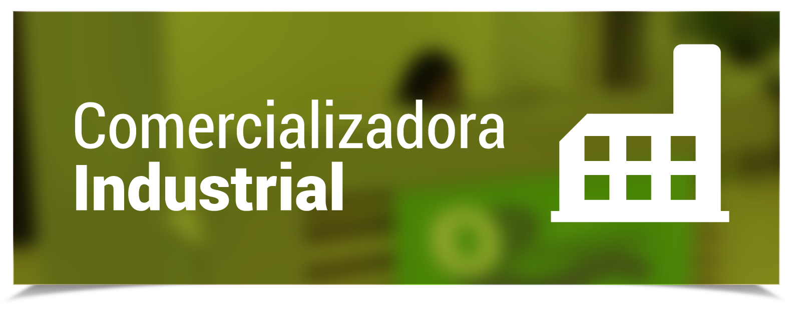 optransportadora_comercializadora_industrial